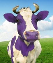 vaca morada