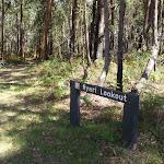 Sign to Nyari Lookout (234602)