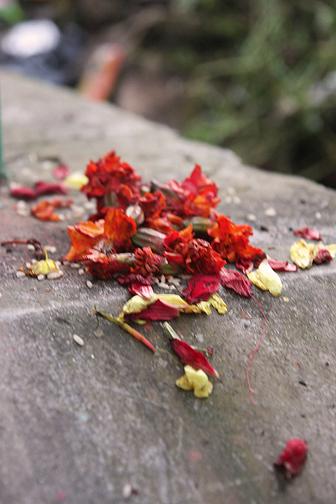 puja, durga puja ceremony, durga puja nepal