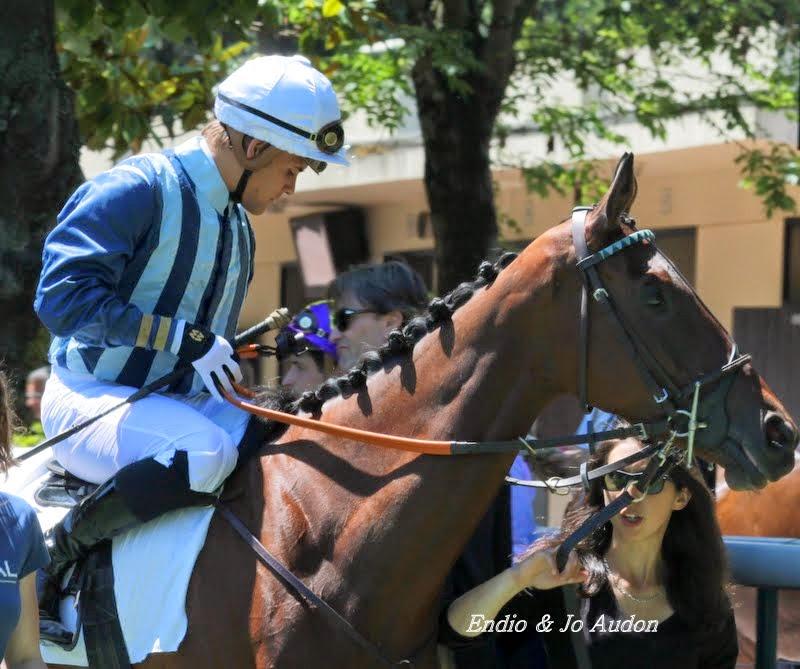 Photos Auteuil le 21-06-2014 IMG_2263