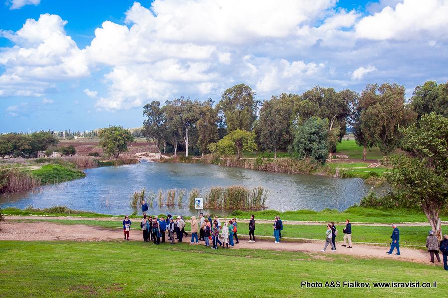 Река Яркон в Израиле. Экскурсия гида Светланы Фиалковой.