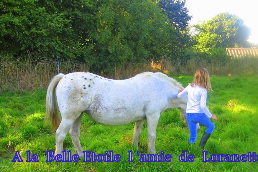 Mon  Amie   la  ponette  dans les chevaux