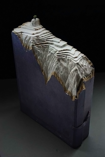 3D art, a combination of sculpted books and painting by French Canadian artist Guy Laramée.