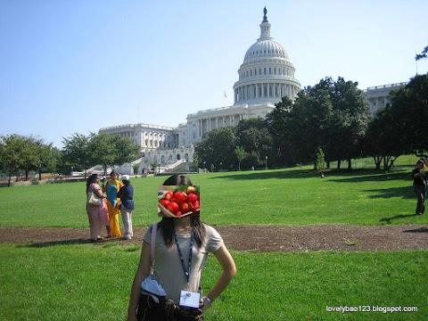 US Capitol 美国国会大厦