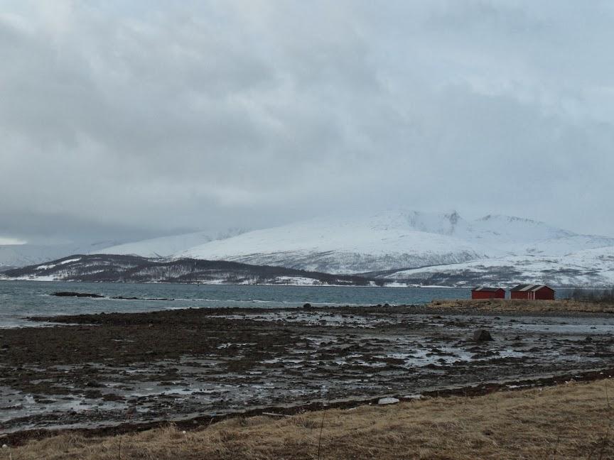 Norvège mars 2014 SAM_1540