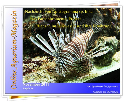 Online Aquarium-Magazin - Novembro/2011