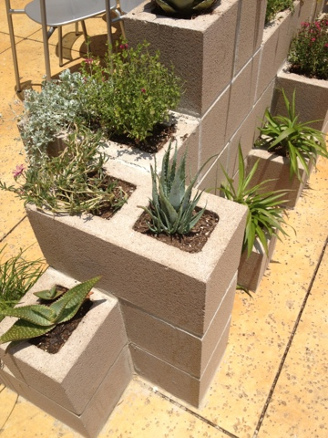 A Kailo Chic Life My Next Garden Project