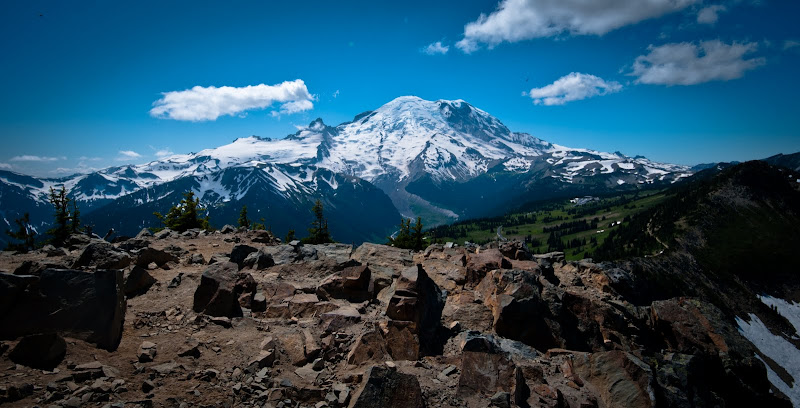 Mt. Rainier National Park -- Sunrise area..