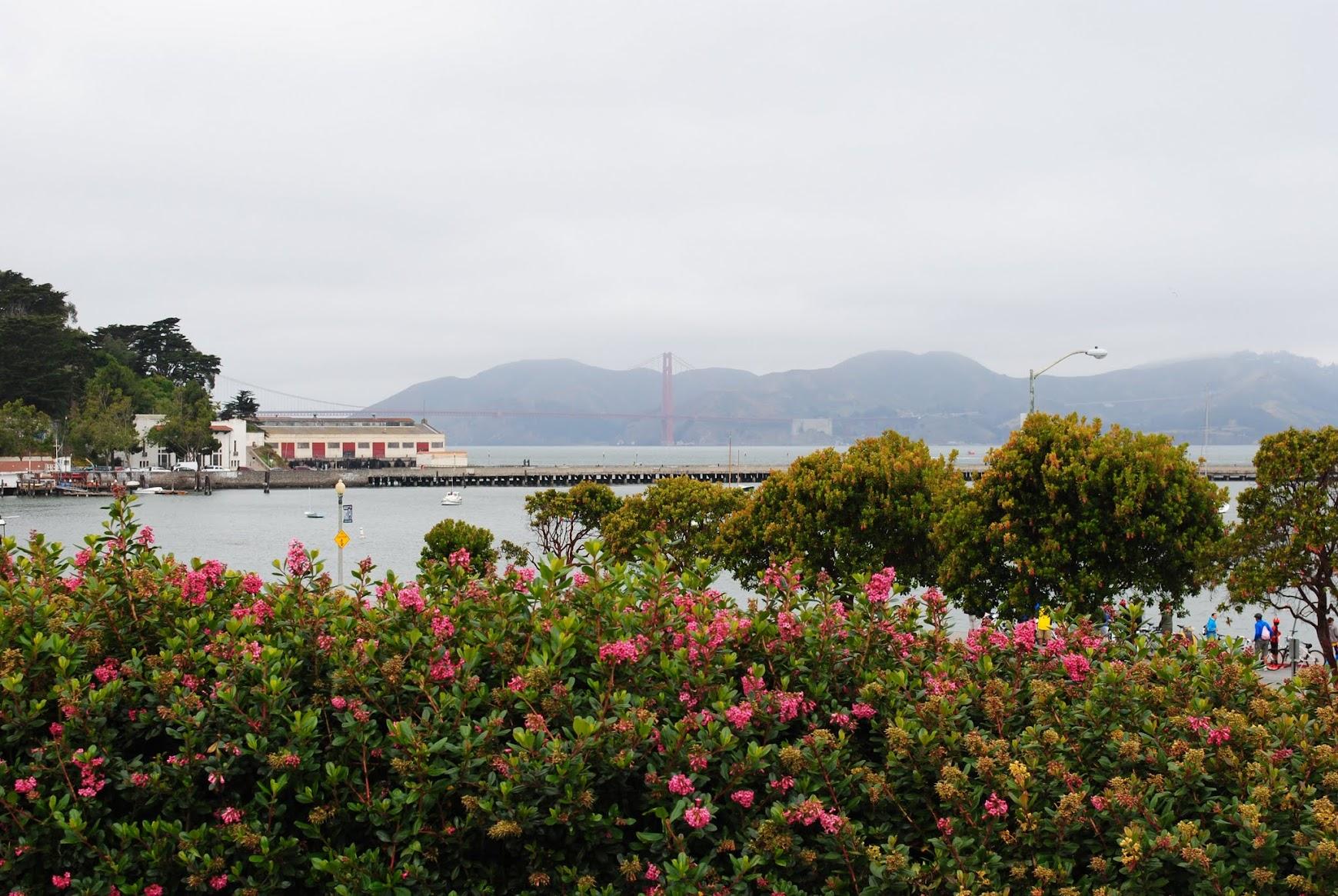 My Photos: San Francisco