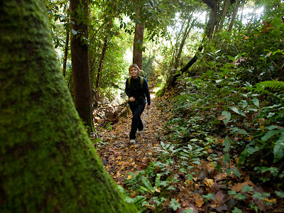Pugem un primer tram força pendent dins un bosc espès
