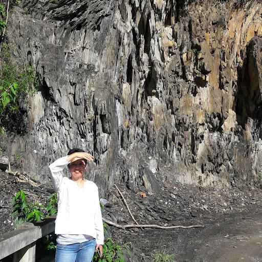 Nancy Seifert Photo 3
