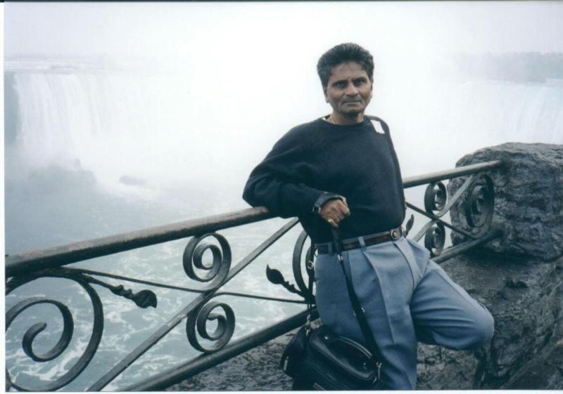 Ram At Niagara