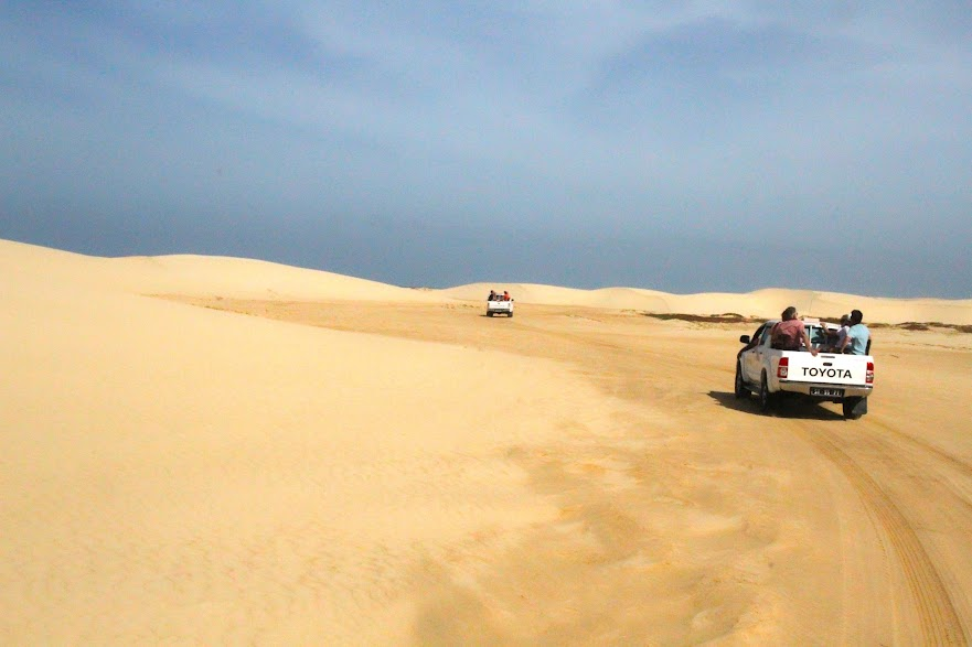 Ilha da BOA VISTA, a ilha da felicidade (e o paraíso para quem procura belas praias) | Cabo Verde