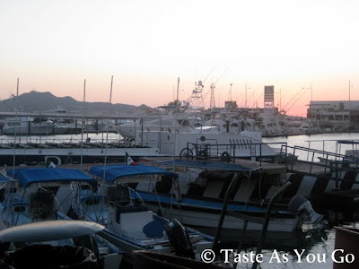 Daybreak at the Marina Cabo San Lucas in Cabo San Lucas, Mexico - Photo by Michelle Judd of Taste As You Go