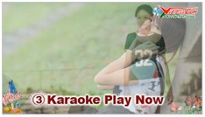 Karaoke - Hồi Tưởng