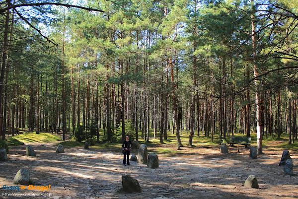 Kręgi Kamienne na Kaszubach