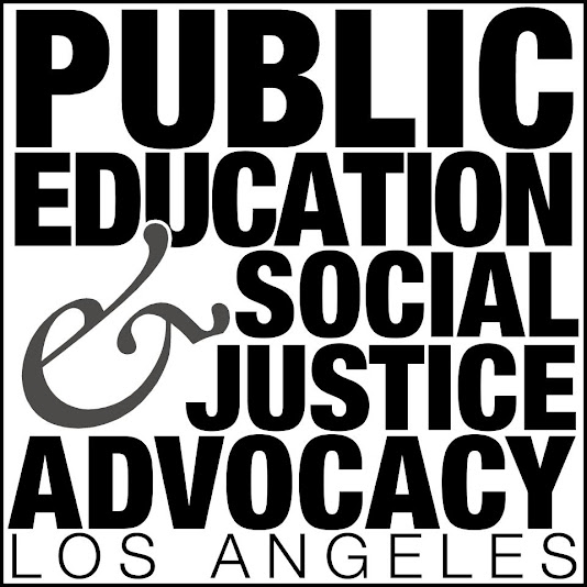 Public Education and Social Justice Advocacy