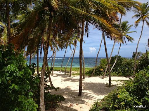 На пляже досточно интимных уголков и тени, чтобы не драться за место под пальмой