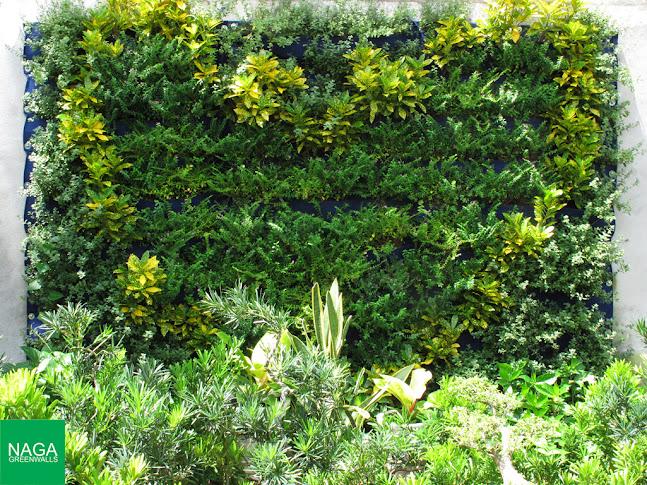 tường xanh