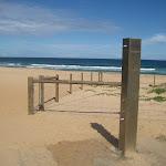 Shower at Garie Beach (44020)