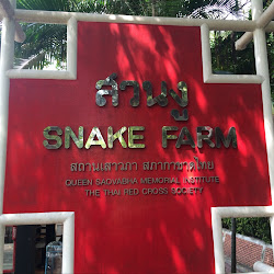 Queen Saowapha Memorial Institute & Snake Farm's profile photo