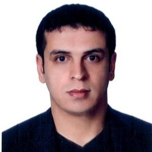 Amin Berneti picture