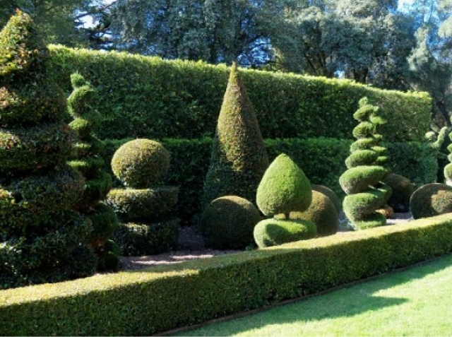 Great gardens tempting topiary for Topiary garden designs