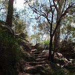 Rock steps down Birrawana Track (116794)