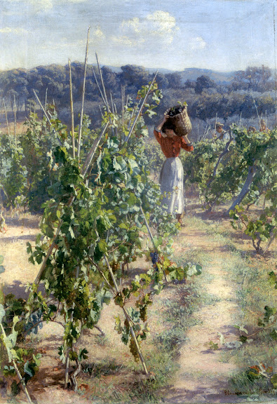 Elin Danielson-Gambogi - Grape harvesting