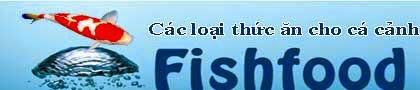 Thức ăn cho cá chép koi