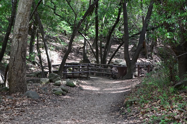 bridge and steps on the trail behind it