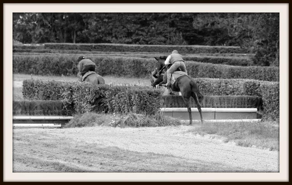 Photos Lamorlaye entrainement obstacle 14-08-2014 IMG_2899