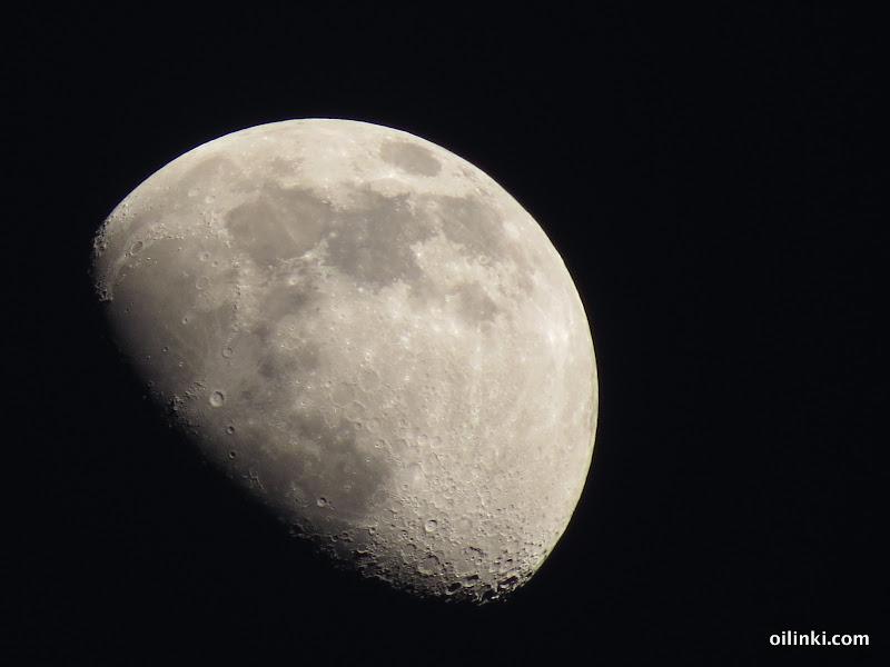 Half moon shots
