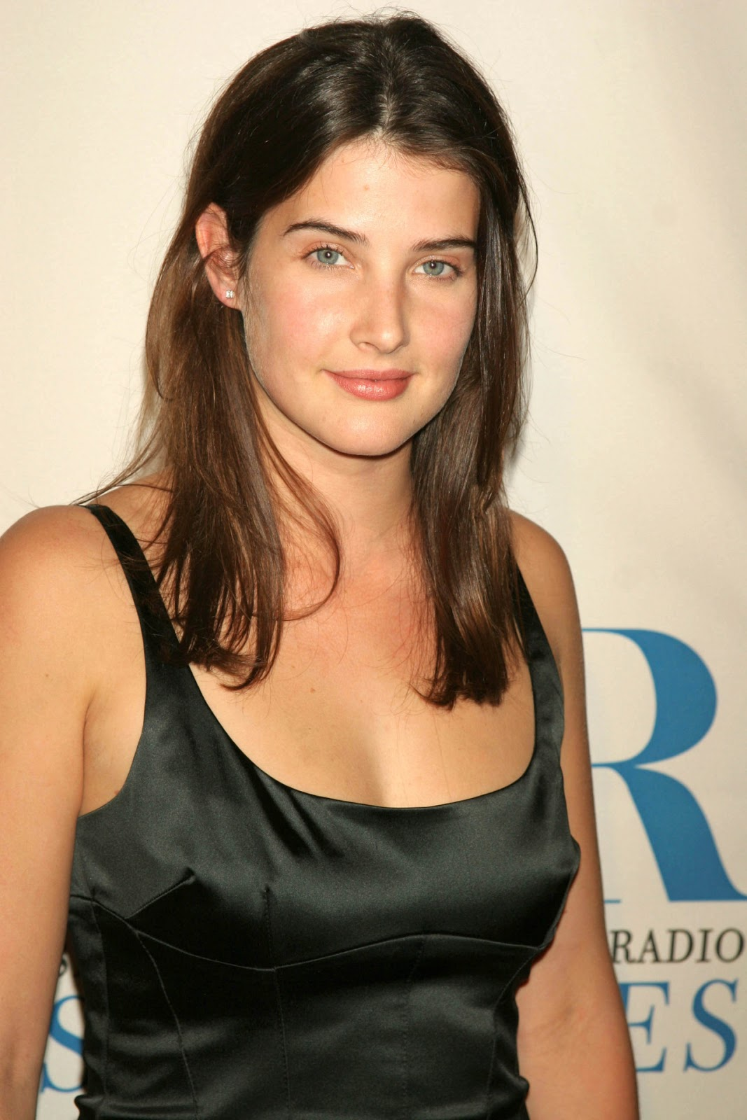 Cobie Smulders  Hd Wallpapers High Definition  Free Background-2144