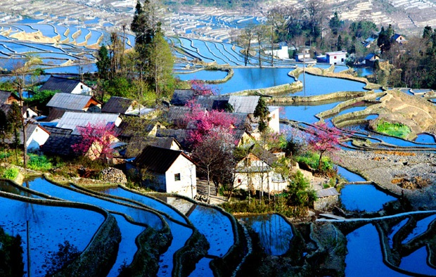 3 - Yanyang County - China