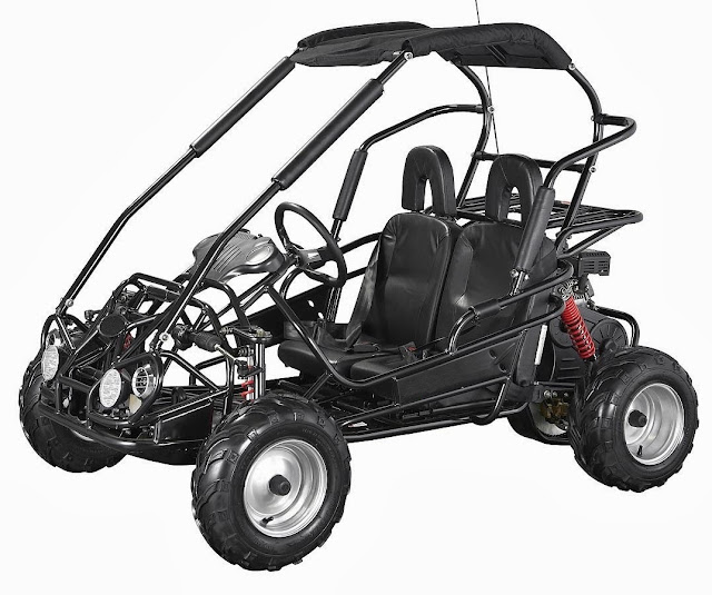 6.5Hp Kids Junior Twin Seater Dune Buggy