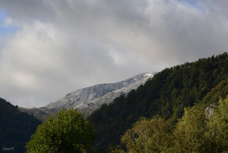 Coup de froid et neige sur le pic dans Actualité locale 1ereneigeLMB_7233
