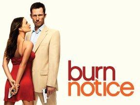 Burn Notice Serien Stream