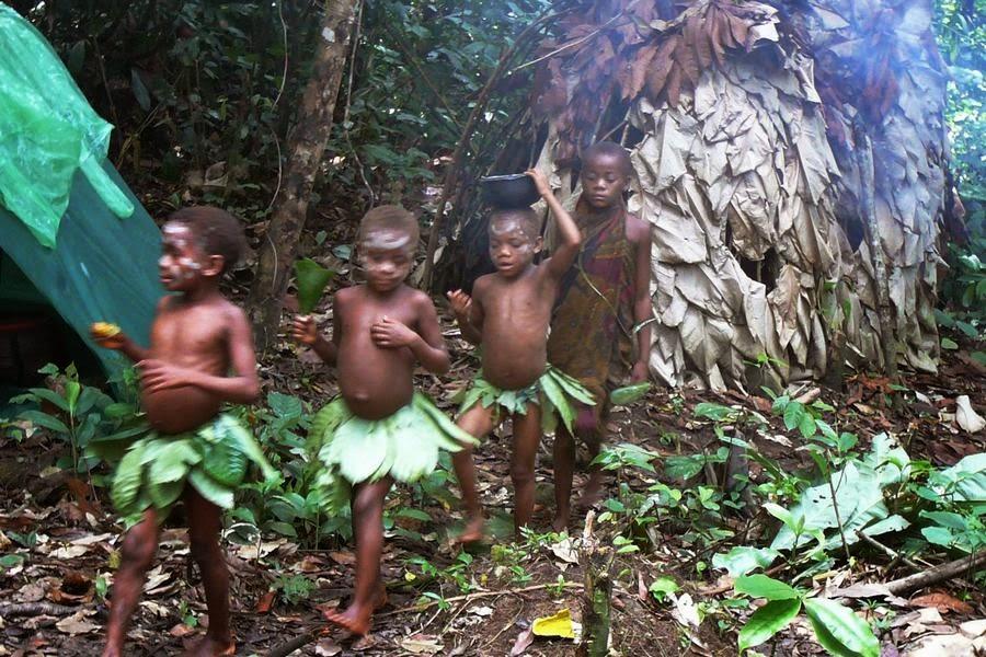 Selva de Ituri – Kivu Norte, República Democrática del Congo, otra de las maravillas naturales del mundo