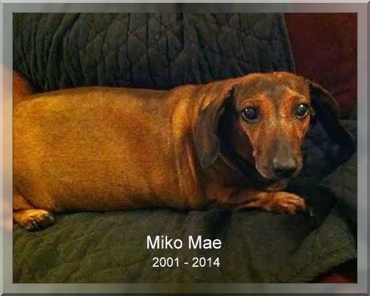 2014 Sandy Thomas Memorial -- MIKO MAE