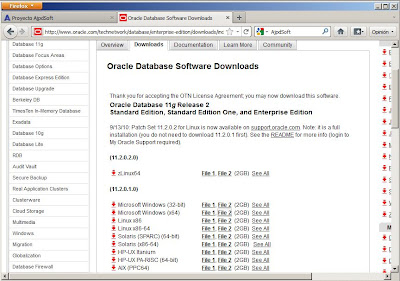 Requisitos previos para instalar Oracle 11g x64 en un equipo