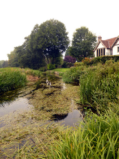 The RIver Cam at Great Chesterford