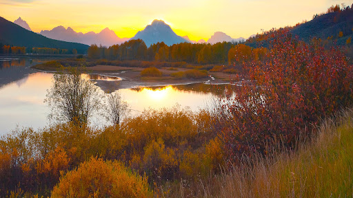 Fall Colors, Grand Teton National Park, Wyoming.jpg