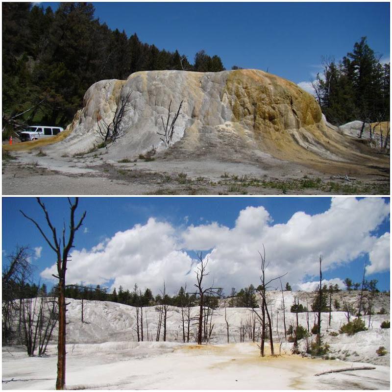 Yellowstone Mammoth Springs