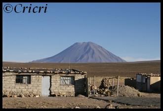 Un mois aux pays des Incas, lamas et condors (Pérou-Bolivie) RetourColca