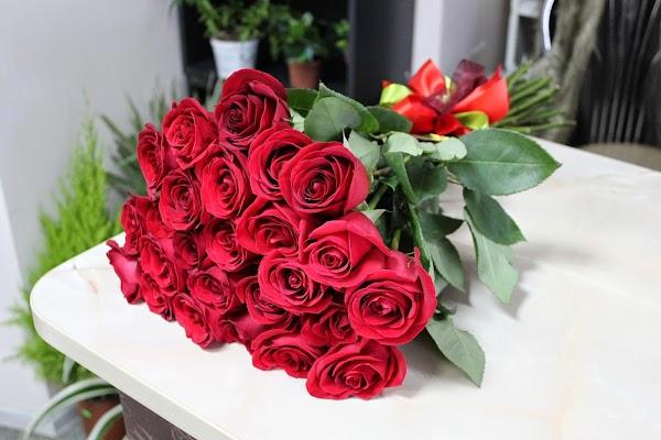 Купить 25 роз