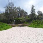 Back of Saltwater Creek Beach (105910)