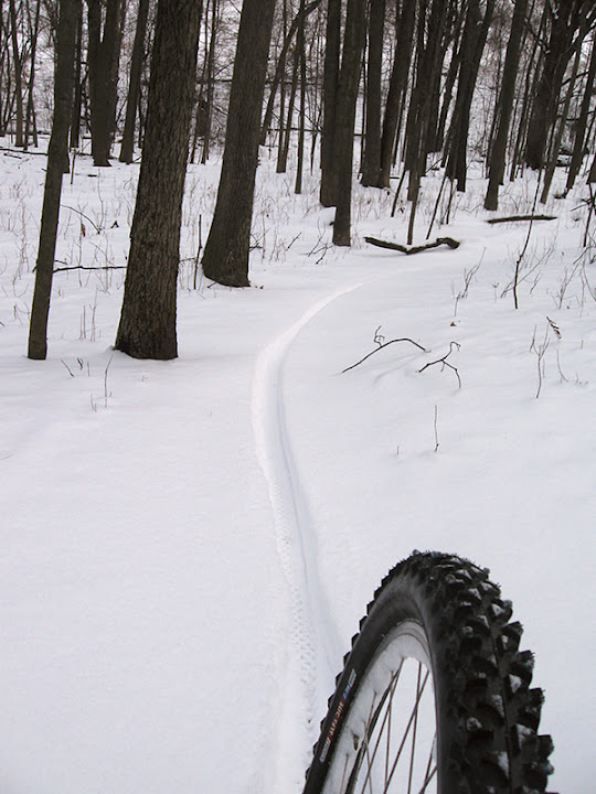 Fresh tracks on the singletrack