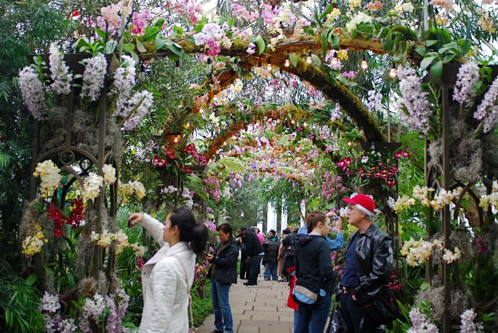 Nyc Nyc The New York Botanical Garden 39 S Orchid Show On Broadway