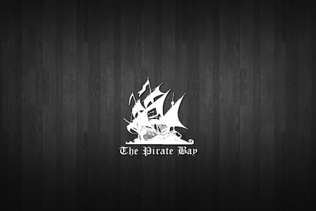 Cae The Pirate Bay